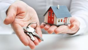 Guide to Irish Property Law